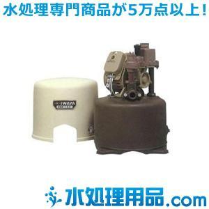 イワヤポンプ 浅井戸用ポンプ WS形 WSTB400-60|mizu-syori