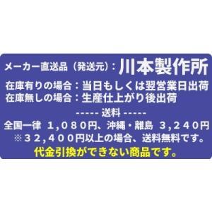 川本ポンプ 小型自吸タービンポンプ 2極 GS(2)-C形 60Hz GS2-406-C1.5|mizu-syori|02