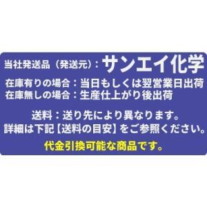 エスロン フランジ用ガスケット 全面パッキン FKM  超純水用 JIS10K 150A EP-FKWJ10-150|mizu-syori|02