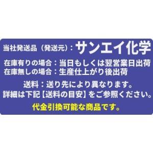樹脂製フィルターハウジング 10インチ 1/2 クリア PAF10-1/2S mizu-syori 02