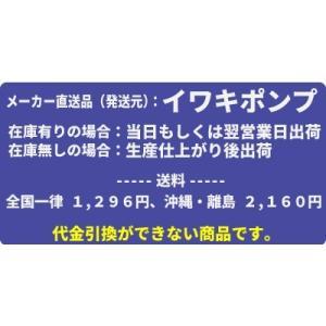 イワキポンプ 次亜塩素酸ソーダ注入ユニット ETU-25N-B11N|mizu-syori|02