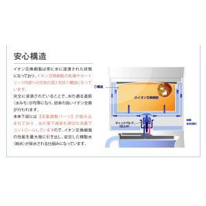 卓上型精製水器 ピュアメーカー専用 交換 精製水カートリッジ 2個セット mizu-syori 03
