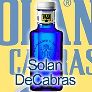 水 天然水 スペインの水  ソラン・デ・カブラス 500mlx20本 PETボトル|mizuhiroba-jp