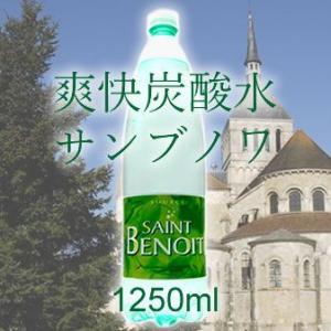 炭酸水 1.25L フランス産 サンブノワSaint Benoit 1250ml 12本 |mizuhiroba-jp