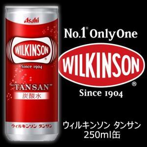 炭酸水 ウィルキンソン タンサン 250ml缶×40本