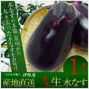 水なす(生) 水ナス 大阪泉州産 朝一番採れたて直送|mizunasuzukehannbai