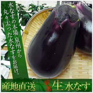 水なす(生)5個 新鮮ぬか床・タッパー付きセット ご自身でお漬け頂けます|mizunasuzukehannbai