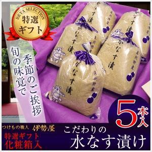 水なす漬け特選5個化粧箱入り  糠漬物 贈答用包装 土佐特産生姜付|mizunasuzukehannbai