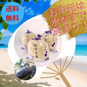 お盆 御供 水なす漬け3個・きゅうり漬け2本セット 送料無料 |mizunasuzukehannbai