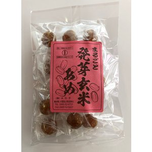 まるごと発芽玄米あめ(80g)|mizunokokai
