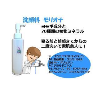 植物ミネラル洗顔料 モリオナ|mizunokokai|02