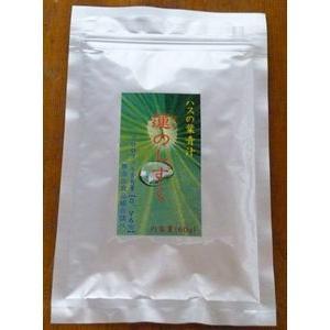 ハスの葉青汁「蓮のしずく」|mizunokokai