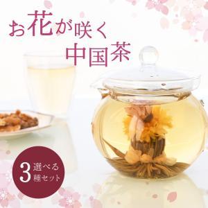 中国茶 花が咲くお茶 工芸茶 選べる 3個 セット ギフト 敬老の日 プレゼント|mizunomori-beauty