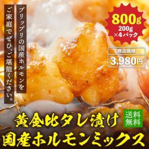 敬老の日 2021 プレゼント お肉 ギフト バーベキュー BBQ ホルモン 味噌味 にんにくネギ塩味 800g 200g×4パック 牛肉 送料無料 通販 お歳暮 ary-hrum01|mizutomi-meat