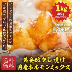 敬老の日 2021 プレゼント お肉 ギフト バーベキュー BBQ ホルモン 味噌味 にんにくネギ塩味 1kg 200g×5パック 牛肉 送料無料 通販 お歳暮 ary-hrum04|mizutomi-meat
