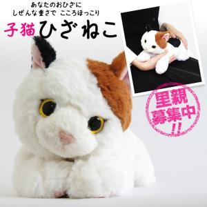 猫 ネコ ぬいぐるみ 誕生日 プレゼント お祝い 癒しグッズ ギフト 猫好き おばあちゃん お母さん 【ひざねこ 子猫】|mizutomo