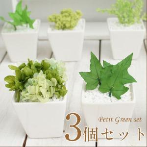 インテリアグリーン 観葉植物 インテリア おしゃれ 雑貨 プリザーブド プレゼント 3個セット 誕生日 記念日 父の日 ミニ|mizutomo