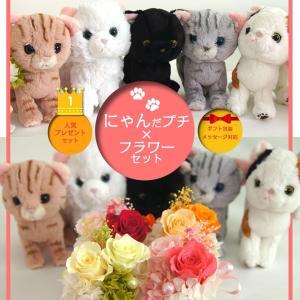 ぬいぐるみ ネコ 母の日 プリザーブドフラワー プレゼント 誕生日 母 結婚祝い 娘 お祝い かわいい ギフト にゃんプチセット|mizutomo
