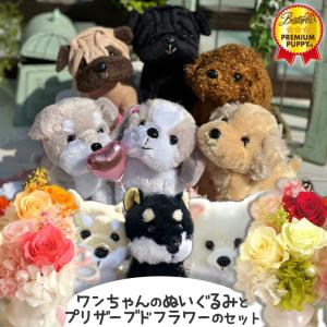 犬 ぬいぐるみ プリザーブドフラワー 誕生日 プレゼント 花ギフト かわいい贈り物 わん♪だプチ フラワー セット|mizutomo