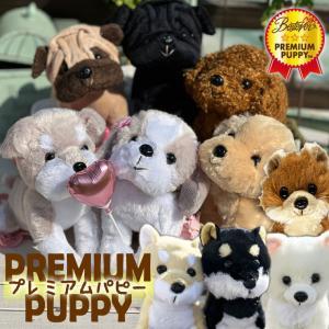 犬 ぬいぐるみ プレゼント 15cm 誕生日 母の日 お祝い 母 女性 娘 かわいい わんプチ 単品|mizutomo