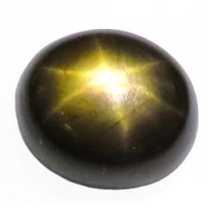 12343 ゴールデンスターサファイア 5.25ct Thama Chantaburi タイ産 : 瑞浪鉱物展示館 【送料無料】 mm-museum