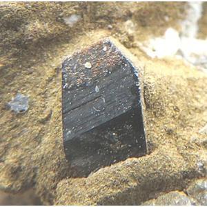 13005 鋭錐石 母岩付 美結晶 金紅石の同質異像 パキスタン産 : 瑞浪鉱物展示館 【送料無料】|mm-museum
