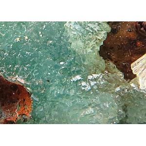 13070 含銅アダム石 蛍光性はない 著明産地 Dalnegorsk ロシア : 瑞浪鉱物展示館 【送料無料】|mm-museum