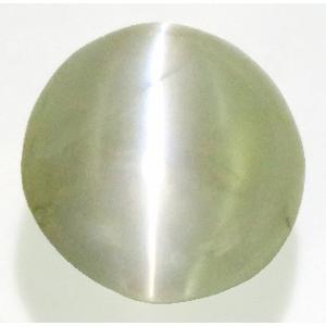 13680 クリソベリルキャッツアイ ルース 1.50ct 強いキャッツアイ効果 半透明 スリランカ産 : 瑞浪鉱物展示館 【送料無料】|mm-museum