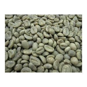 コーヒー生豆 グァテマラ SHB 5kg|mmc-coffee