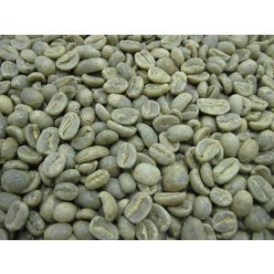 コーヒー生豆 コロンビア エクセルソ 5kg|mmc-coffee