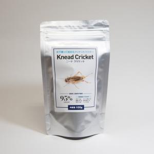 ニードクリケットは水で練って固まるコオロギパウダーです。  レオパ、ヒョウモントカゲモドキの人工飼料...
