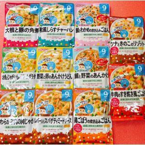和光堂 離乳食9ヶ月から 11食セット 全て違う味 ベビーフード S-1