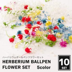 商品名    ハーバリウムボールペン用花材    商品説明    ハーバリウムボールペン用花材になり...
