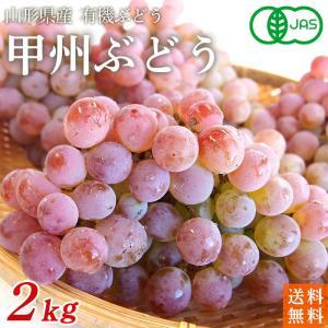 稲泉農園・山形県産甲州ぶどう秀品(種ありぶどう)4kg(10〜12房前後)|moa