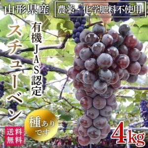 稲泉農園・山形県産スチューベン 秀品(種ありぶどう)4kg(12〜14房)|moa