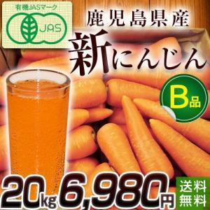 有機にんじん20kg・訳あり・ジュース用・加工用・規格外品・鹿児島県産|moa