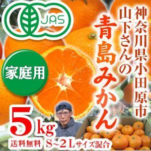 有機みかん・青島みかん5kg【優品・家庭用・送料無料・数量限定品】|moa