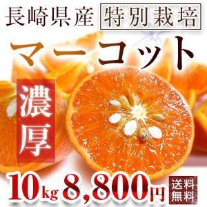 長崎県産マーコット5kg×2箱【送料無料】