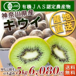 石綿敏久さん栽培のキウイフルーツ(Mサイズ以上混合)5kg【送料無料】|moa