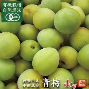 生産者の石綿敏久さんは、神奈川県小田原市で300年以上続く、農家の15代目です。  キウイフルーツを...