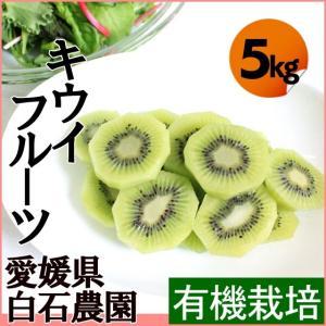 キウイフルーツ!国産、無農薬。 「キウイフルーツ・5kg 58個程度」