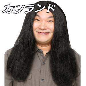 ウィッグ カツラ コスプレ 衣装 レディース メンズ 男性 女性 カツランド 黒髪ロン毛 4560320863403|mobadepa