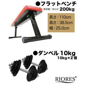 トレーニングセット [フラットベンチ/アイアンダンベル 10kg x2個(20kg)セット ] ラバーコーティング / ラバーダンベル 鉄アレイ 10キロ 筋トレ 器具|mobile-garage1|03