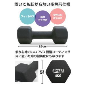 ダンベル 5kg 2個セット [送料無料] エクササイズ フィットネス ダイエット ストレッチ 鉄アレイ 5キロ 女性 男性|mobile-garage1|02