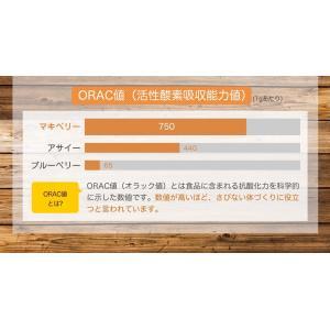マキベリー パウダー 50g [送料無料] 無添加 無着色 ポリフェノール アントシアニン 抗酸化 スーパーフード mobile-garage1 04