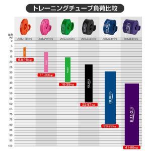 [送料無料] トレーニングチューブ EASY 幅2.2cm 負荷11-30kg 筋トレ ストレッチ エクササイズ|mobile-garage1|02