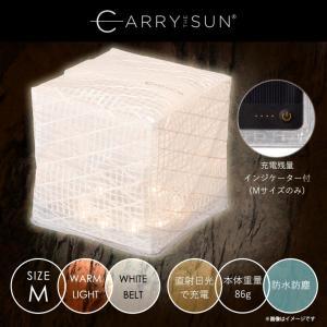 LEDライト ソーラー式エコライト CTSW-WHM【5000】Warm Light White M...