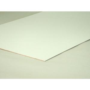 重量:400g サイズ:2.5x910x300mm 一般的な内装用化粧合板です。 ラックの表面、背板...