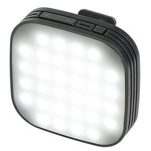 Kenko スマホ用LEDライト リアルプロクリップライト 自撮り用 フラッシュモード搭載 10段階光量調整 KRP-32L molto-bene