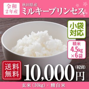 米 お米 30kg 秋田県産 ミルキープリンセス 令和2年産新米 5kg×6袋
